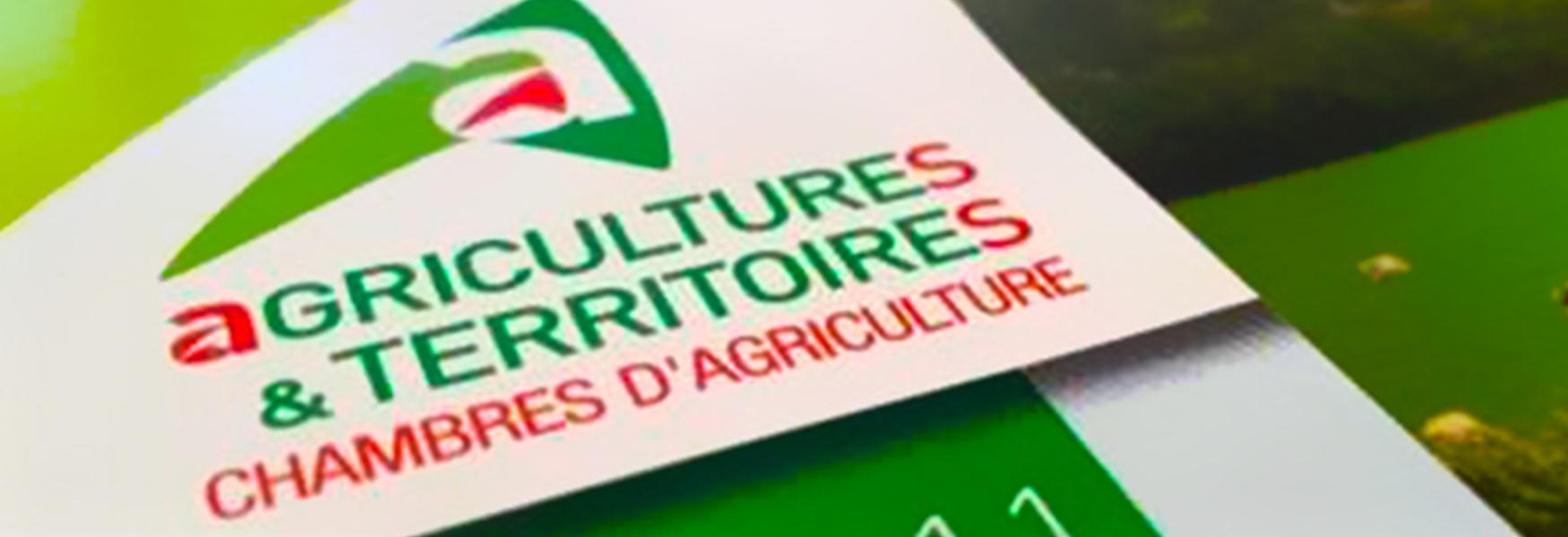 Élections des membres de la chambre d'agriculture